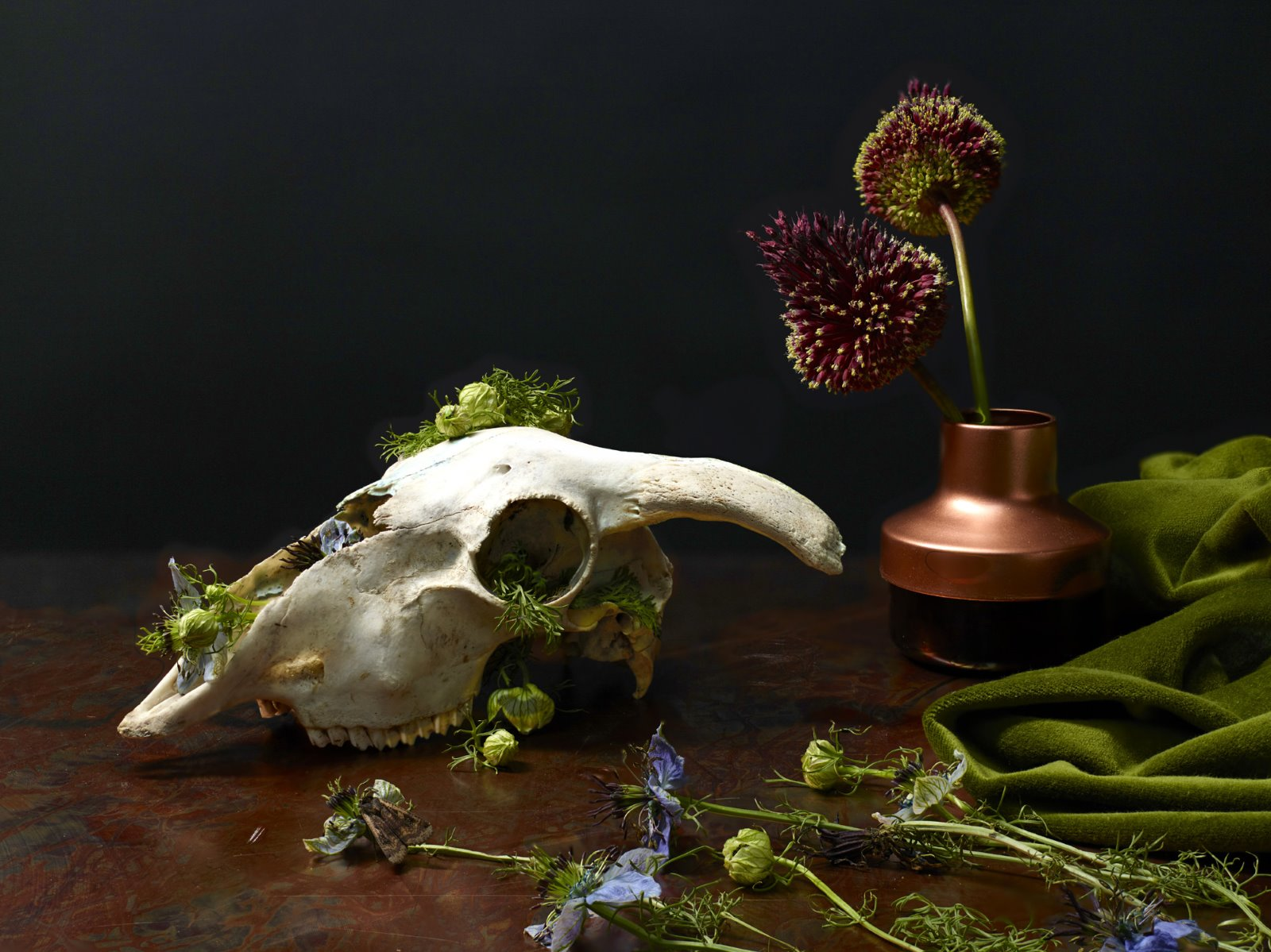 table top photography skull copper velvet lux