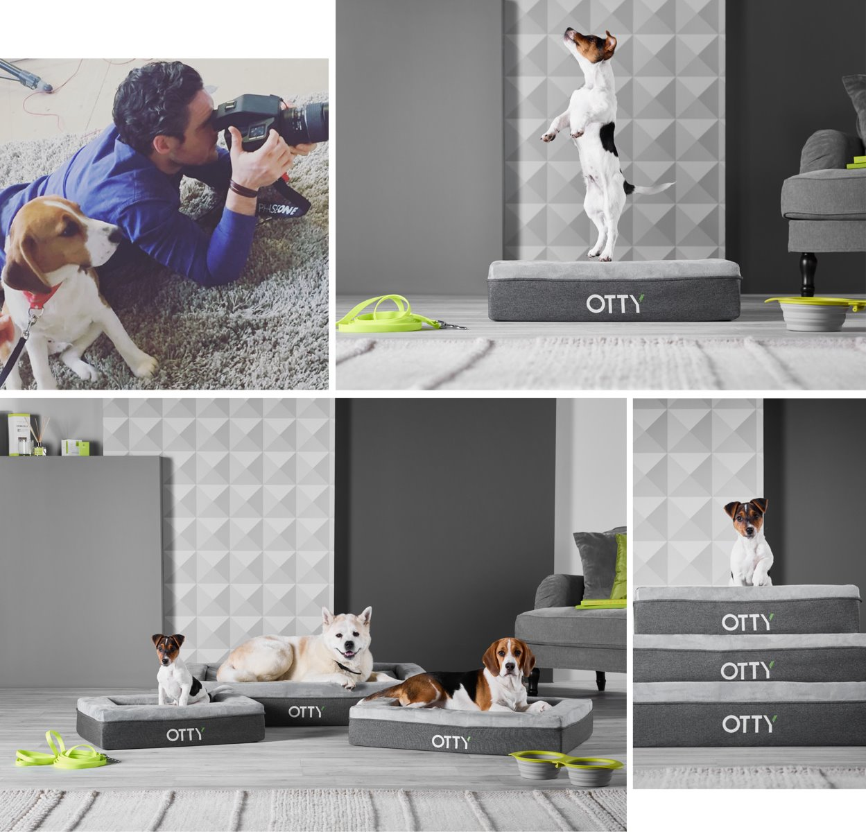 studio_photography_product_dogs_set_visions